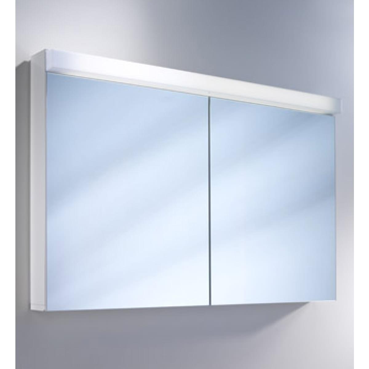 Schneider Lowline 2 Door Mirror Cabinet With Fluorescent