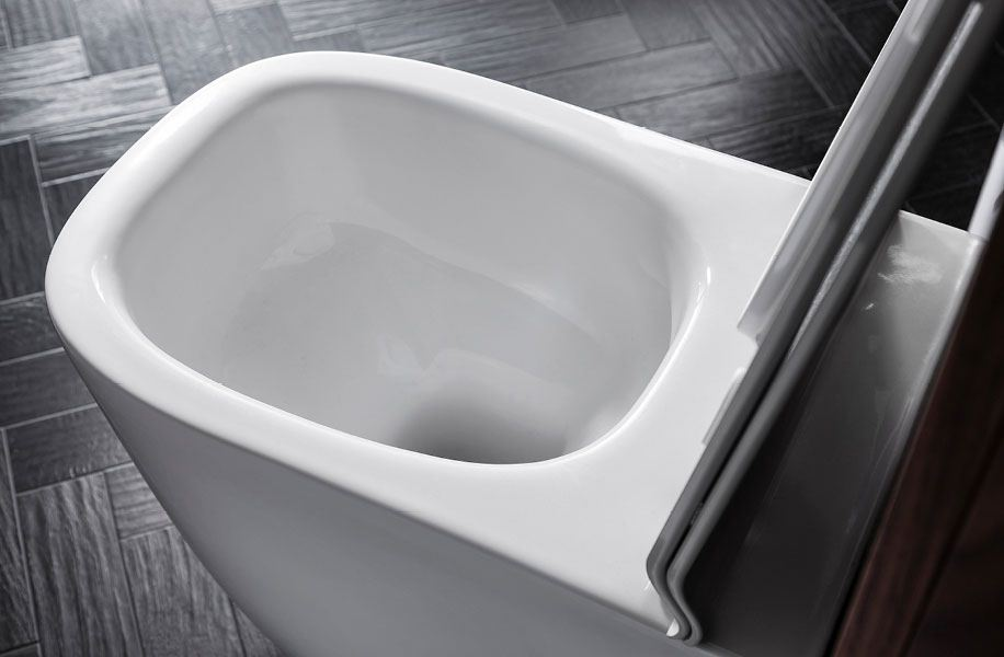 Bauhaus Wild Rimless Wall Hung Wc With Soft Close Seat